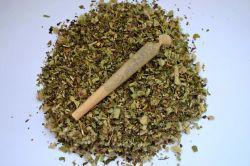 Meditation Smoke Blend (com ou sem mapacho / com ou sem menta) - 20 gramas